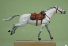 Doi's Corner 2 – Horses!