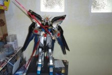 PG Shining Strike Freedom