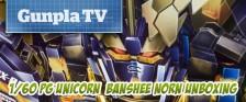 Gunpla TV Special –  1/60 PG Unicorn Banshee Norn Unboxing