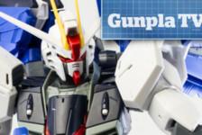 Gunpla TV – Episode 204 – Two Freedoms: MG Freedom and Freedom 2.0!