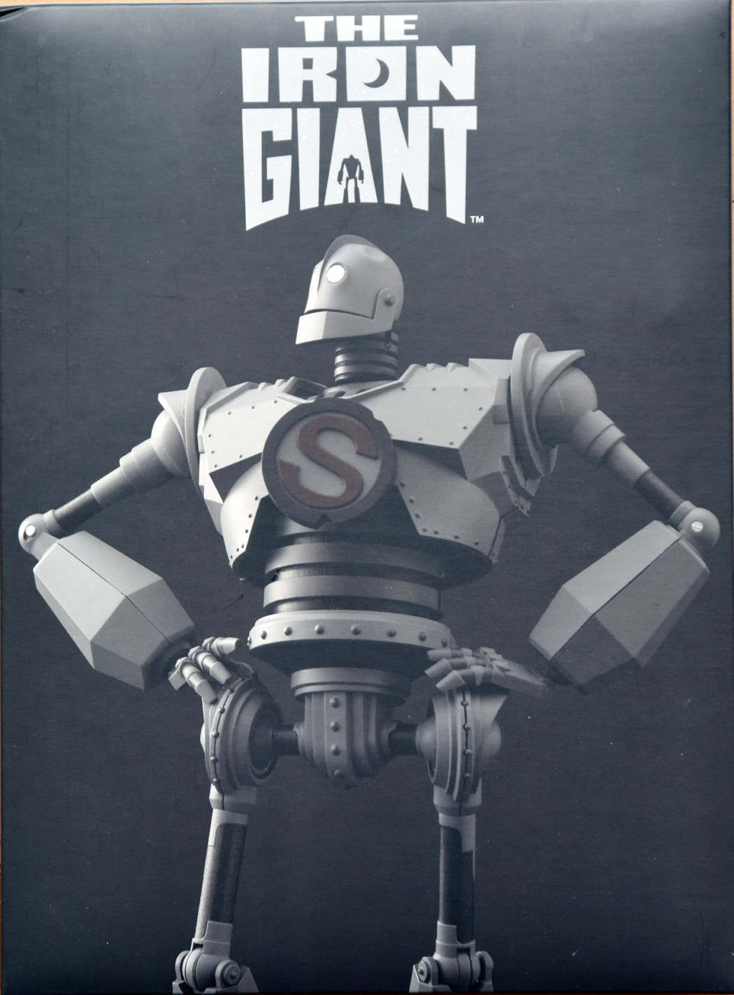 Riobot The Iron Giant by Sentinel (Part 1: Unbox)