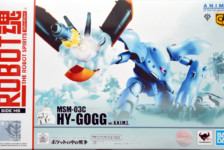 Robot Damashii MSM-03C Hygogg ver. A.N.I.M.E. by Bandai (Part 1: Unbox)