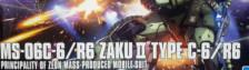 1/144 HG Zaku II Type C6/R6