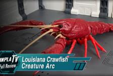 Creature Arc Procambarus Clarkii / Louisiana Crawfish (Red)