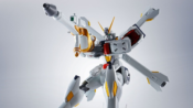 Robot Damashii Crossbone Gundam X1/X1 Kai Evolution Spec Review