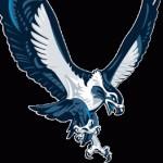 Profile picture of Falcon