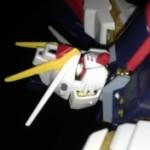 Profile picture of Darkdragon8806