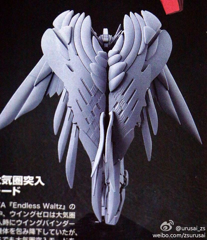 wing-jpg