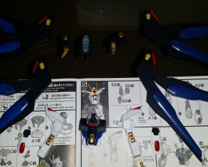 strike freedom (11)