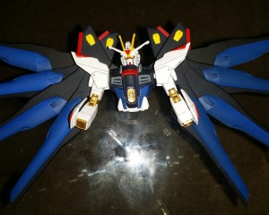 strike freedom (12)