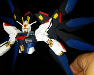 strike freedom (14)