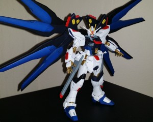 strike freedom (16)
